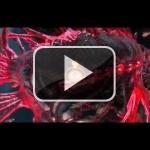 El primer nivel de Asura's Wrath, en vídeo