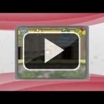 Los juegos third party de 3DS que se nos vienen encima