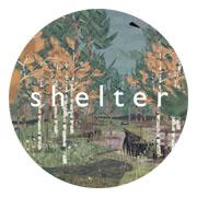 Análisis de Shelter