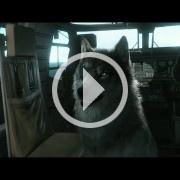 TGS 2014: El lobo con parche en el ojo de Metal Gear Solid V: The Phantom Pain lo cambia todo
