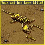 El desarrollo de Ant Simulator termina en drama