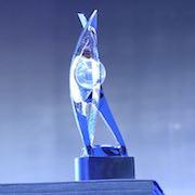 Los D.I.C.E. Awards se resuelven con Zelda como gran ganador