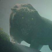 Shadow of the Tomb Raider permite personalizar al detalles las opciones de dificultad y accesibilidad
