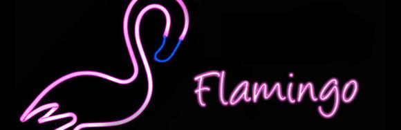 Operación Flamingo (CXXXIX y final)