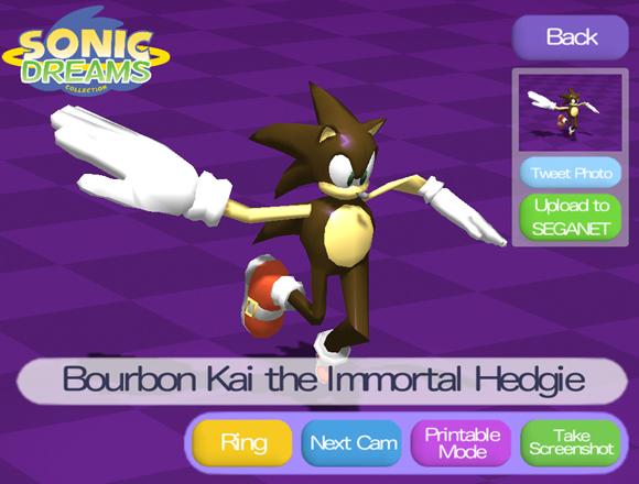 Sonic Dreams Collection, crónica de una mañana sórdida